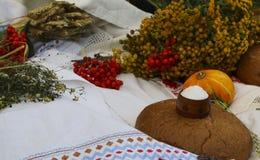 Jesieni wciąż życie - bochenek, bania, halny popiół, tansy, pszeniczni ucho, sól, na białym tablecloth z koronką Fotografia Stock