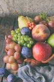 Jesieni wciąż życie dla dziękczynienia z jesieni owoc i jagodami na drewnianym tle - winogrona, jabłka, śliwki, viburnum, dereń obraz stock