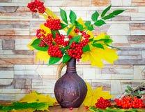 Jesieni wciąż życie: jagody i jesień liście w ceramicznej wazie Obrazy Stock