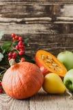 Jesieni wciąż życie z baniami i jabłkami Spadku żniwa pojęcie Fotografia Royalty Free