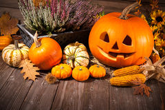 Jesieni wciąż życie z Halloweenowymi baniami fotografia stock