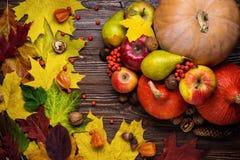 Jesieni wciąż życie, zbierać banie z spadków liśćmi i autum, obraz stock