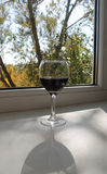Jesieni wino Zdjęcia Stock