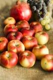 Jesieni winogrono, granatowiec i jabłko owoc na wełny tle, fotografia stock