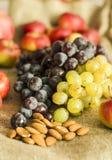 Jesieni winogrono, granatowiec i jabłko owoc na wełny tle, obraz stock