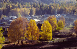 Jesieni wioska w Xinjiang fotografia stock