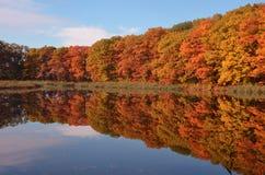 Jesieni woda Obrazy Stock