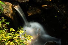 Jesieni woda Fotografia Royalty Free
