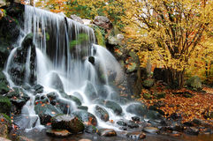 jesienią wodospadu Fotografia Royalty Free