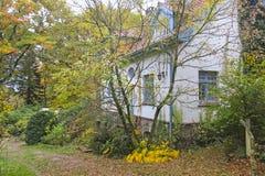 Jesieni wrażenie od Saxony lasu blisko Hamburg, Niemcy Fotografia Stock