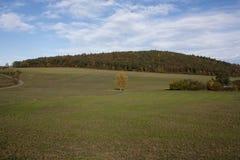 Jesieni wzgórze Obraz Royalty Free