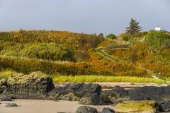 Jesieni wzgórze Zdjęcia Stock