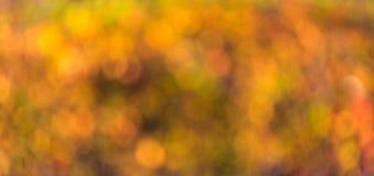 Jesieni zamazany abstrakcjonistyczny tło Obrazy Stock