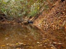 Jesieni zatoczka Zdjęcie Stock
