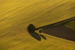 Jesieni ziemia uprawna w republika czech z góry fotografia royalty free