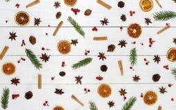 Jesieni zimy wzoru skład gałąź drzewo, Fotografia Royalty Free