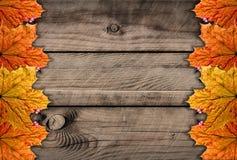 Jesienie drewniane Obraz Stock