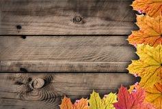 Jesienie drewniane Obraz Royalty Free