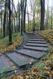 Jesienna droga Zdjęcie Stock
