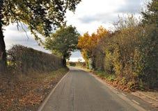Jesienna droga w wsi Zdjęcia Royalty Free