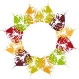 Jesienna liścia okręgu rama Obrazy Royalty Free