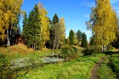 Jesienna natura, sceneria Obraz Royalty Free