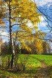 Jesienna natura, sceneria Zdjęcia Stock
