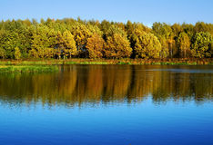 Jesienna natura, sceneria Fotografia Royalty Free