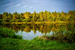 Jesienna natura, sceneria Obrazy Royalty Free