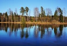 Jesienna natura, sceneria Zdjęcie Stock