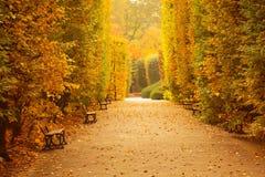 Jesienna parkowa aleja Obrazy Royalty Free