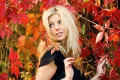 jesienna rama fotografia royalty free