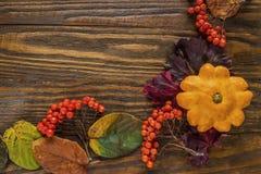 Jesienna rama, pocztówkowy pluśnięcie, Fotografia Royalty Free