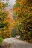 jesienna road Zdjęcia Stock