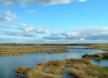 jesienna rzeki Obrazy Stock