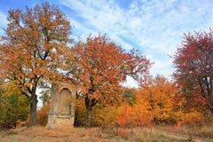 jesienna sceneria Obraz Stock