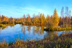 Jesienna sceneria Zdjęcia Royalty Free