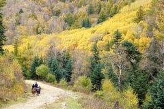 jesienna sceneria Zdjęcie Royalty Free