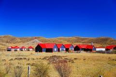 Jesienna sceneria Qinghai, Tybet plateau - Zdjęcie Stock