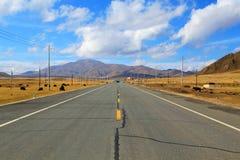 Jesienna sceneria Qinghai, Tybet plateau - Zdjęcia Stock
