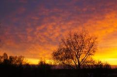 Jesienna sceneria, wschód słońca Fotografia Royalty Free