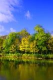 jesiennego błękitny der lasowa nieba un Fotografia Stock