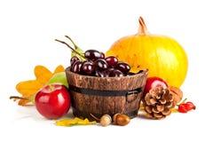 Jesienni żniw owoc i warzywo z żółtymi liśćmi fotografia stock
