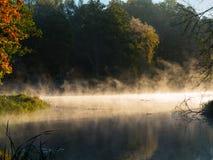 Jesienni drzewa nad spokojną mgłową wodą Obrazy Royalty Free