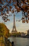 Jesienni drzewa w przedpolu i wieża eifla Zdjęcie Royalty Free
