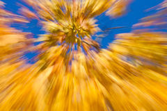 Jesienni fajerwerki Zdjęcia Royalty Free