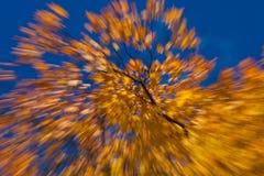 Jesienni fajerwerki Obrazy Stock