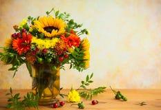 jesienni kwiaty Obraz Stock