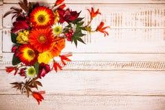 Jesienni kwiaty i jagody Zdjęcie Royalty Free