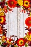 Jesienni kwiaty i jagody Fotografia Stock